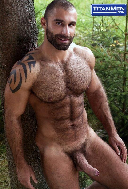 Gay daddies bears hairy erotic stories